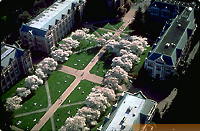 Humanities quadrangle in spring