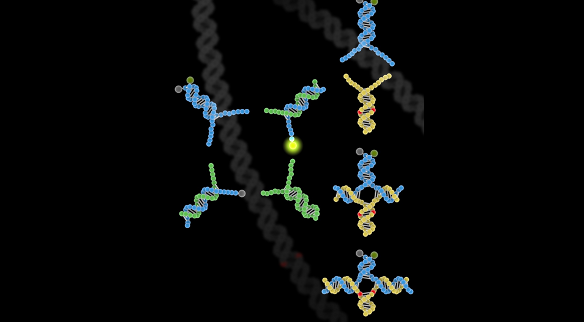 Conceptual image of new SNP genotyping technique